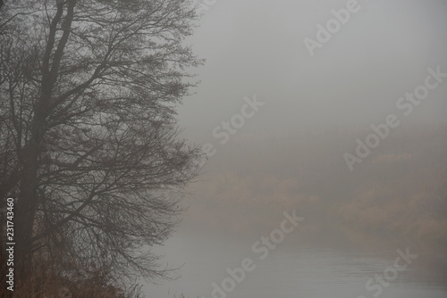 Foto op Canvas Donkergrijs landscape - fog in late fall