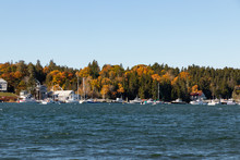 Bass Harbor In The Fall