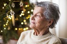 A Portrait Of A Senior Woman I...