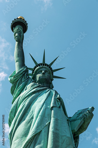 Fotografie, Obraz  New York City / USA - AUG 22 2018: The statue of liberty back view in clear blue