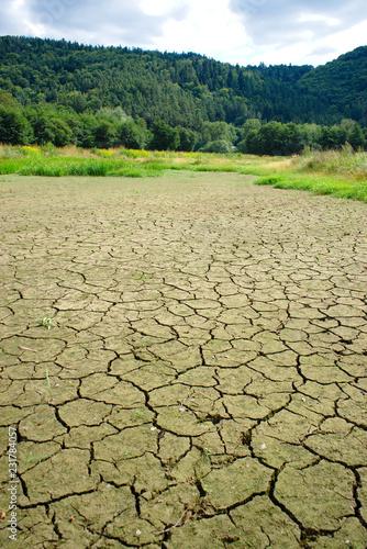 zone humide du lac d'Aydat en Auvergne, asséchée durant l'été
