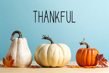 Thankful Message With Pumpkins On A Blue Background