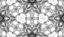 Black And White Seamless Pattern. Astonishing Deli