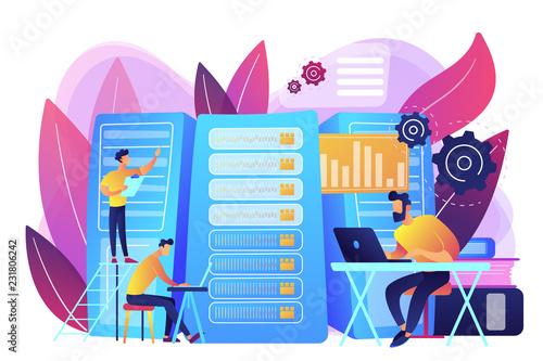 Data scientist, data analytics manager, database developer and administrator working Poster Mural XXL