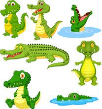 Cartoon Green Crocodile Collec...