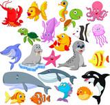 Fototapeta Fototapety na ścianę do pokoju dziecięcego - Cartoon sea life collection set