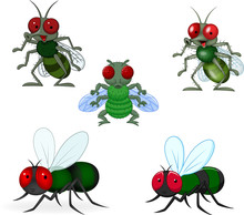 Cartoon Green Fly Collection Set