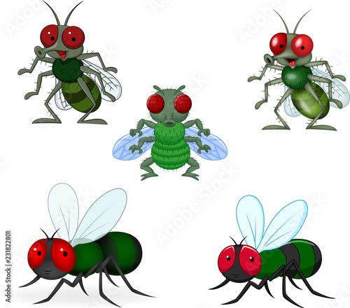 Cartoon green fly collection set Fototapete