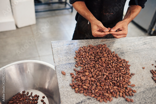 Cuadros en Lienzo Worker selecting quality cocao beans for chocolate production by hand
