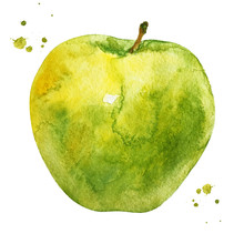 Green Apple With Branch In Watercolor Style