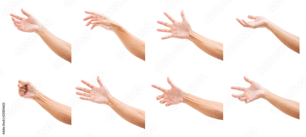 Fototapety, obrazy: Set of man hands isolated on white background