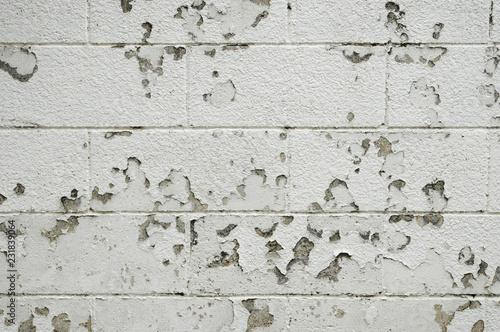 Fotografie, Obraz  古いブロック塀