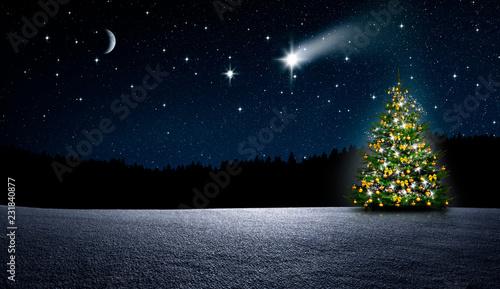 Valokuva  Weihnachtbaum im Nächtlichen Winterwald