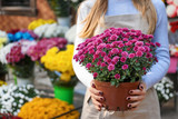 Saleswoman holding pot with beautiful chrysanthemum flowers in shop