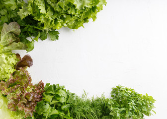 FototapetaFresh aromatic culinary herbs on white background. Lettuce, dill, leaf celery and small leaved basil
