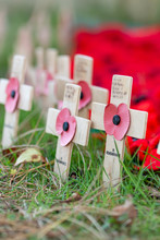 Remembrance Poppies On Wooden ...