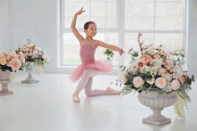 Ballet Dancer Girl In Pink Pointe And Tutu In Hall With Big Window , Little Ballerina Stand On One Knee Among Flower Bouquet. Education Lessons In Classic Dance School, Sport For Kids