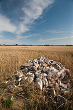 Pile Of Rubbish Tipped In Farm...