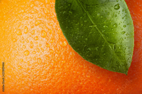 orange wiht leaf
