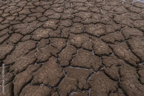 Fotografía  Dry cracked soil texture background