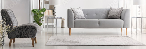 Fotografie, Obraz Real photo of bright New York style living room interior with grey couch with si