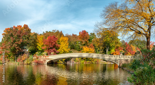 Canvas Prints Honey Panoramic view of autumn landscape with Bow bridge in Central Park. New York City. USA