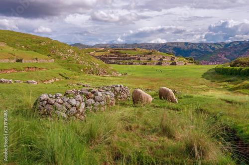 Spoed Foto op Canvas Zuid-Amerika land Sacsayhuaman, Inca ruins in Cusco, Peru