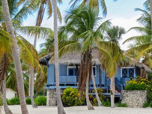 Fotografia La Romana, Dominican Republic - Beautifull Beach house with tropical palms and w