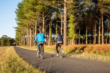 Promenade à Vélo Dans Les Landes