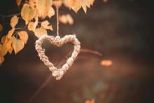 Herz In Baum