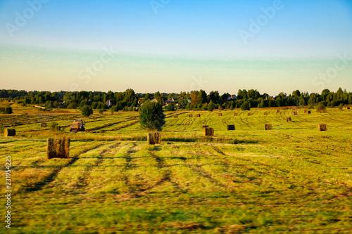 rural landscape, Spain