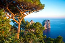 Scenic Mediterranean Landscape...