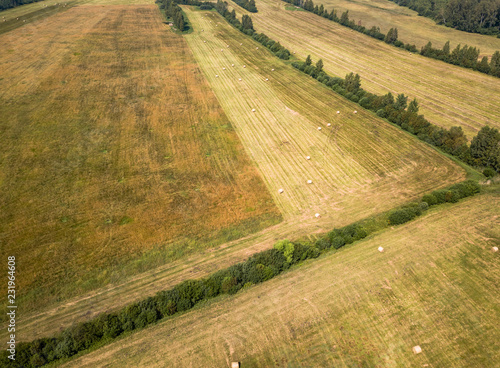 Fotobehang Cultuur Aerial Drone Photo of Hay Rolls in the Wheat Field, Surrounded with Forests