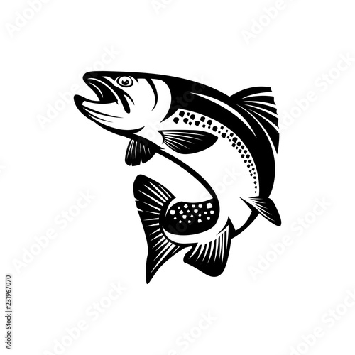 trout fish Canvas-taulu