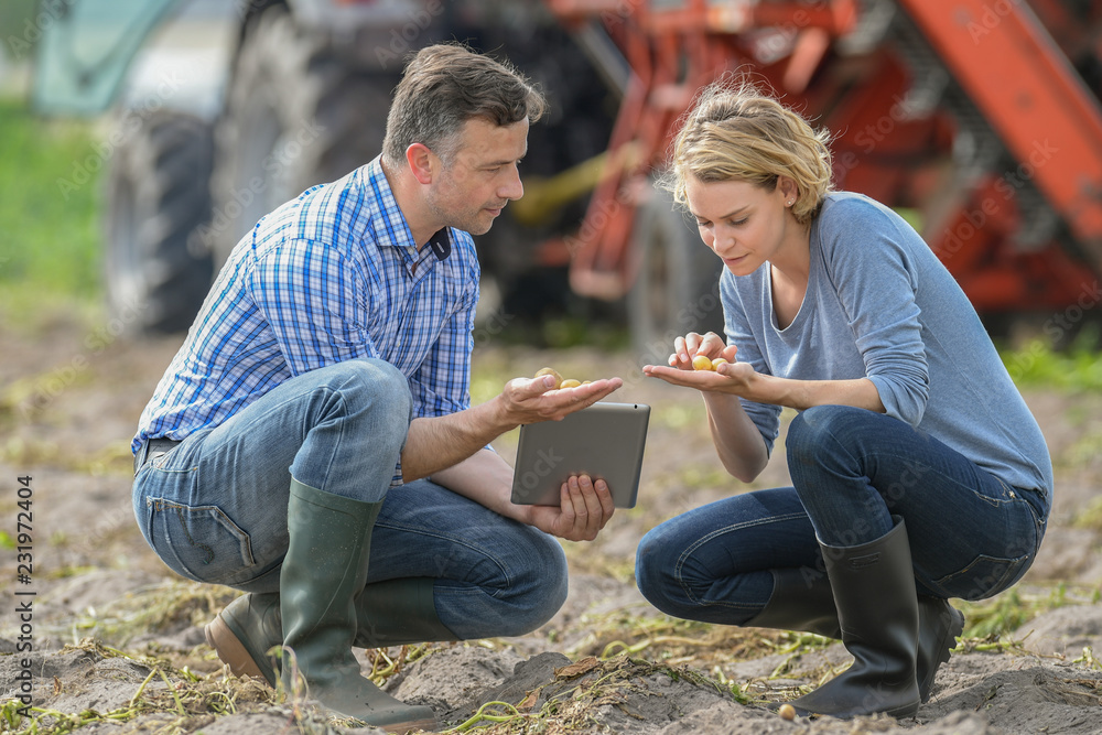 Fototapety, obrazy: Woman and man checking seeds in a farm