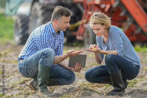 Fototapeta Woman and man checking seeds in a farm obraz