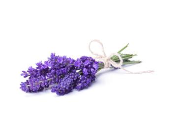 Lavendel - Kleiner Strauß Lavendelblüten
