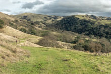 A Hiker In Green Hills Country...