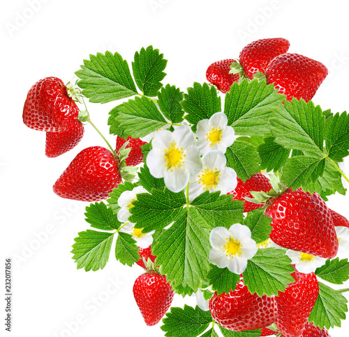 ripe red fresh strawberries on white