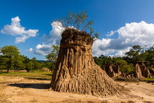 Soil Textures Of Sao Din Nanoy...