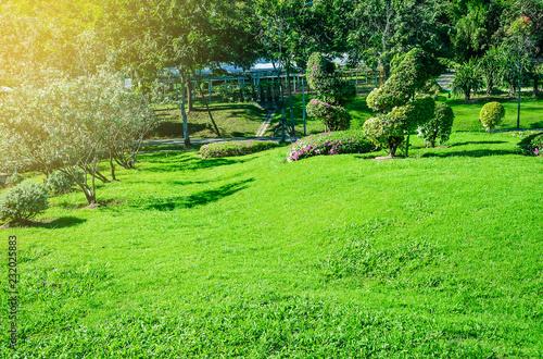 Staande foto Lime groen Landscape formal, Front yard is beautifully designed garden, Peaceful Garden, Morning sunlight shines on the green lawn in a peaceful garden.