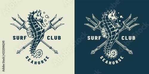 Photo Vintage monochrome nautical logo