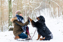 Woman And Dog Giving High-five In The Snow On Winter Day