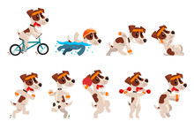Cute Sportive Jack Russell Terrier Set, Funny Pet Dog Character Doing Various Kinds Of Sports Vector Illustrations