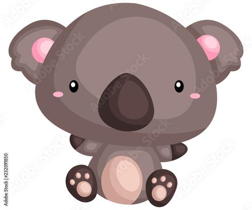 Fototapeta premium wektor i pulchna i słodka koala