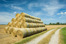 Stacked Hay Bales In A Field Near The Road