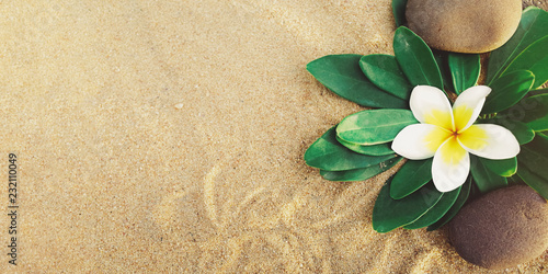 Photo Stands Plumeria flower with pebbles on sand