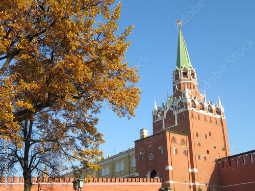 In de dag Moskou Moscow Kremlin in autumn. Troitskaya tower with red star, Kremlin wall and tree branches with yellow leaves