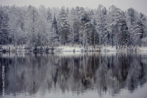 Recess Fitting Gray traffic Winter landscape: snow-covered forest on the lake, the reflection of snow trees in the water.