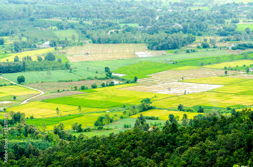 Staande foto Lime groen countryside landscape view of northern in Thailand